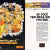 Propaganda antiga de videogame - Street Fighter 2 1994