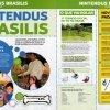 Nintendo Brasilis 01