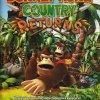 Propaganda Donkey Kong Country Returns 2010