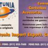Netunia - VideoGame 62