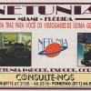 Netunia - Ação Games 61