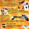 Controle Net - Revista do CD-Rom 106