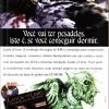 Lands of Lore - Revista do CD-Rom 29