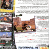 Perceptum - Revista do CD-Rom 41