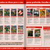Revistas Editora Europa - NGamer Brasil 12
